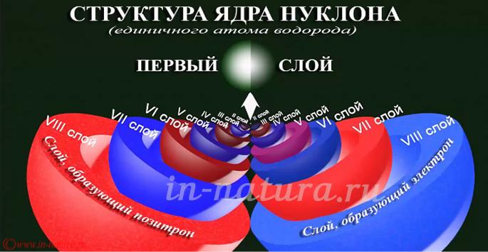 Структура ядра нуклона.