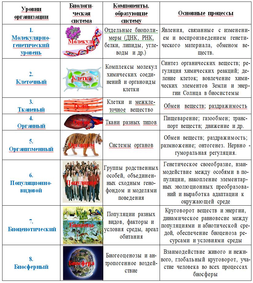 ЕГЭ по биологии 3-1