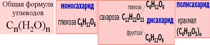 ЕГЭ по биологии 71