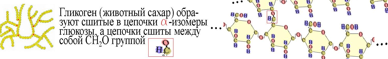 ЕГЭ по биологии 791